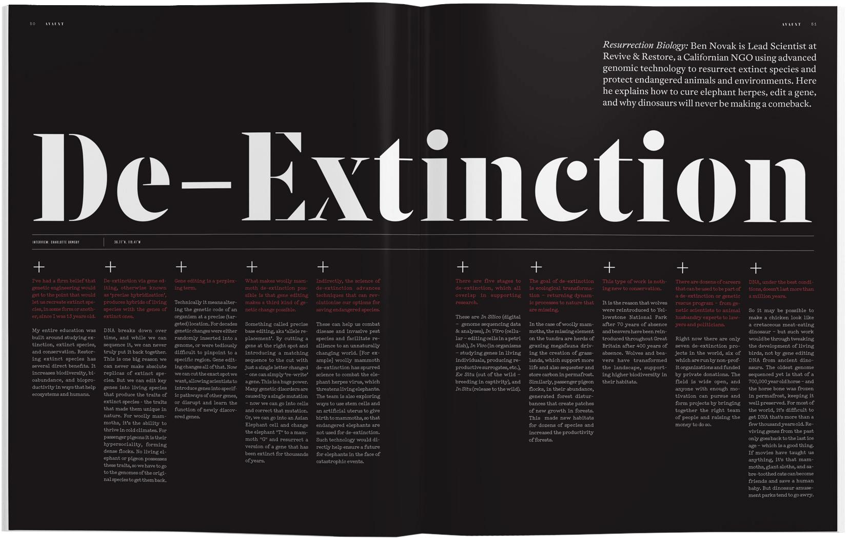 Inspired Design Decisions: Avaunt Magazine