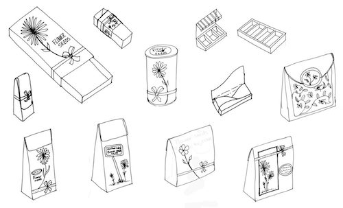 Concept development and sketches for flower seed packaging