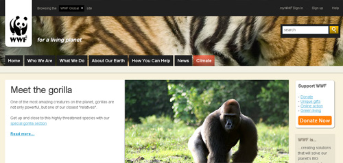 WWF on IE6