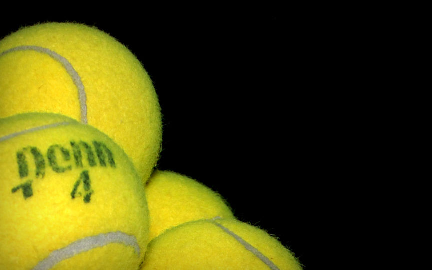 Tennis Ball Fur