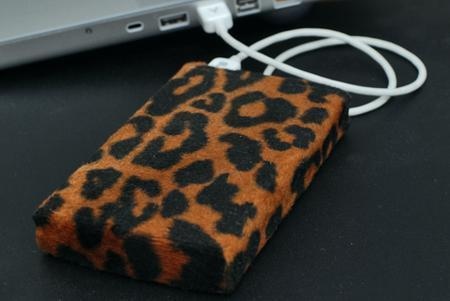 Laptop Designs - Chaosprojects » Getting ready for OSX Leopard