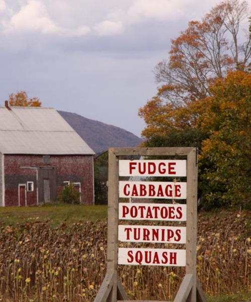 Wayfinding and Typographic Signs - fudge-before-veggies