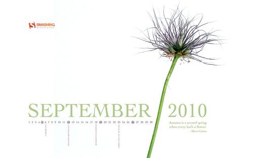Smashing Wallpaper - september 10