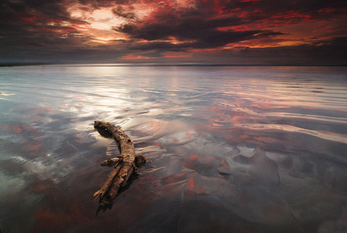 Beautiful Photography - Song of Tide