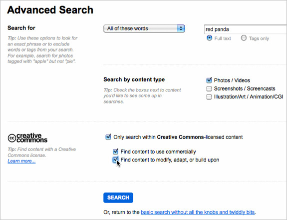 Advanced Search in Flickr