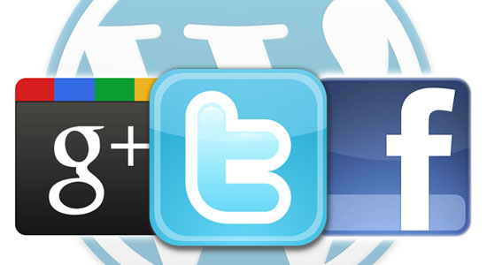 The Big Three: Twitter, Facebook, and Google+