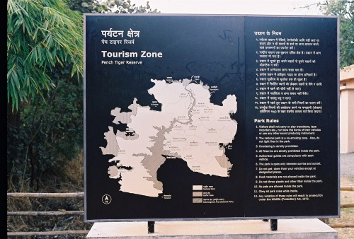 Wayfinding and Typographic Signs - tiger-territory-1