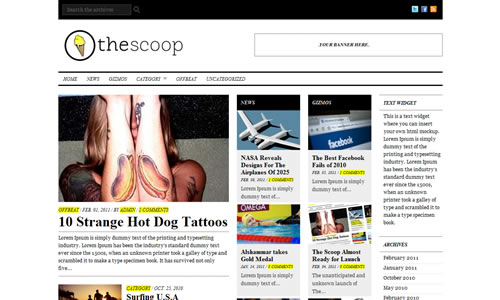 The Scoop Free WP Theme