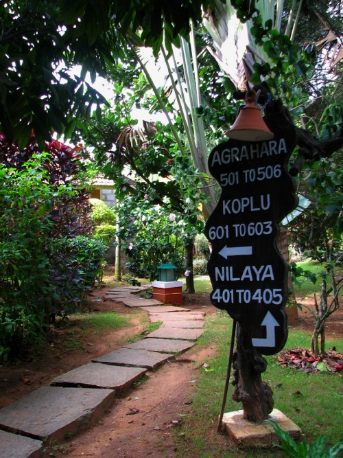 Wayfinding and Typographic Signs - road-to-hassan-village