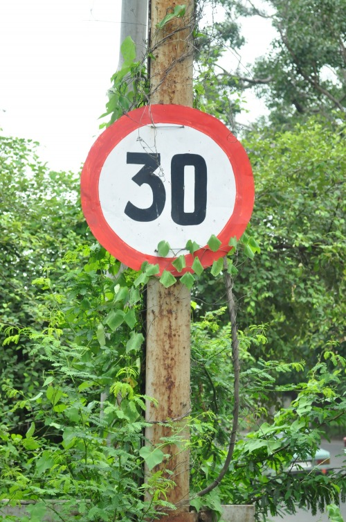 Wayfinding and Typographic Signs - speed-limit