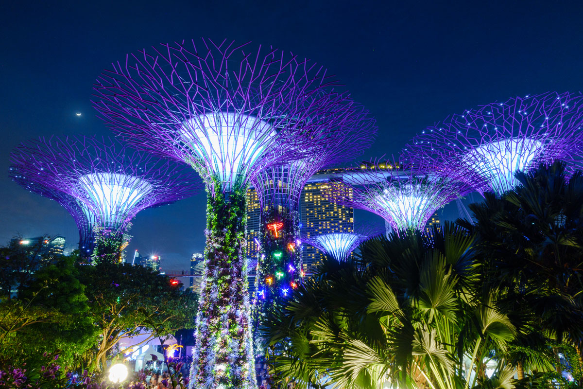 A beautiful view from the Gardens of the Bay onto the Singapore' skyline at night.