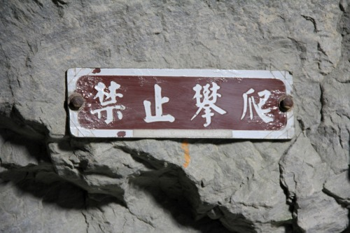 Wayfinding and Typographic Signs - do-not-climb