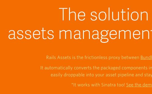 04-rails-assets-opt