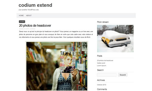 Codium Extend Free WP Theme
