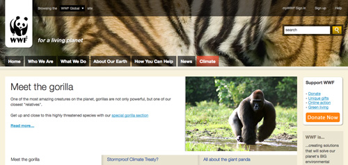 WWF on Firefox