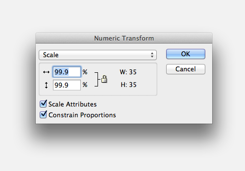 Using Numeric Transform
