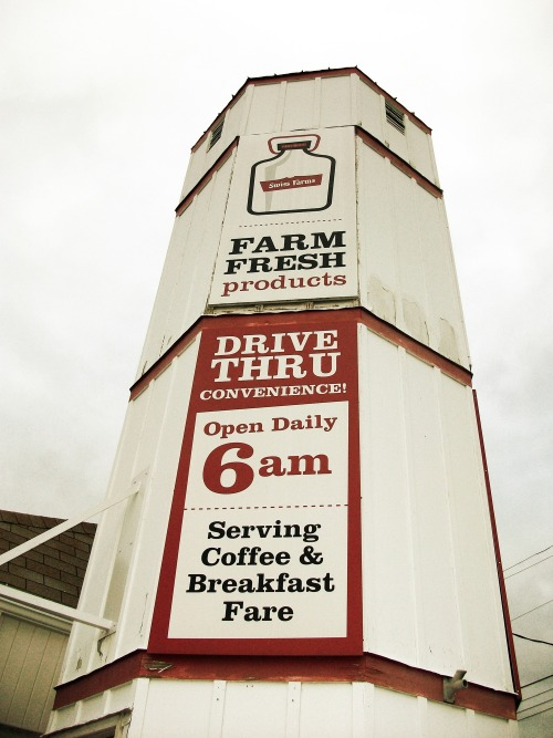 Wayfinding and Typographic Signs - udderly-tall