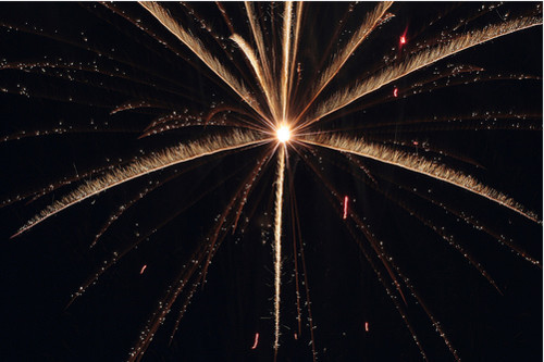 Fireworks Photos - Starburst Frailty