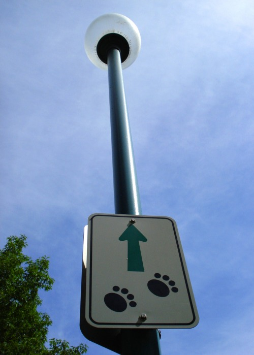 Wayfinding and Typographic Signs - all-dogs-go-to-heaven