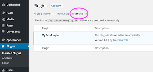Must use plugins interface in Wordpress dashboard
