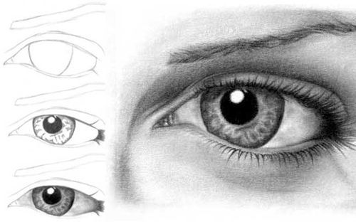 How to draw a realistic eye artist made this tutorial to show the different steps that he take in drawing a realistic eye