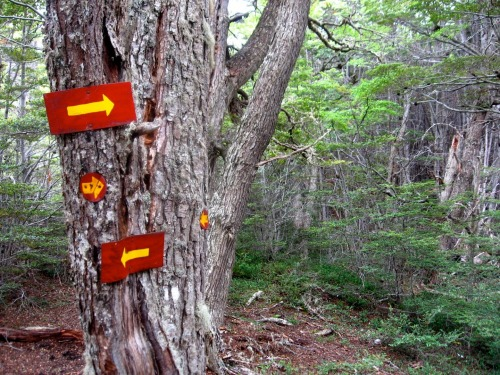Wayfinding and Typographic Signs - lost-in-tierra-del-fuego